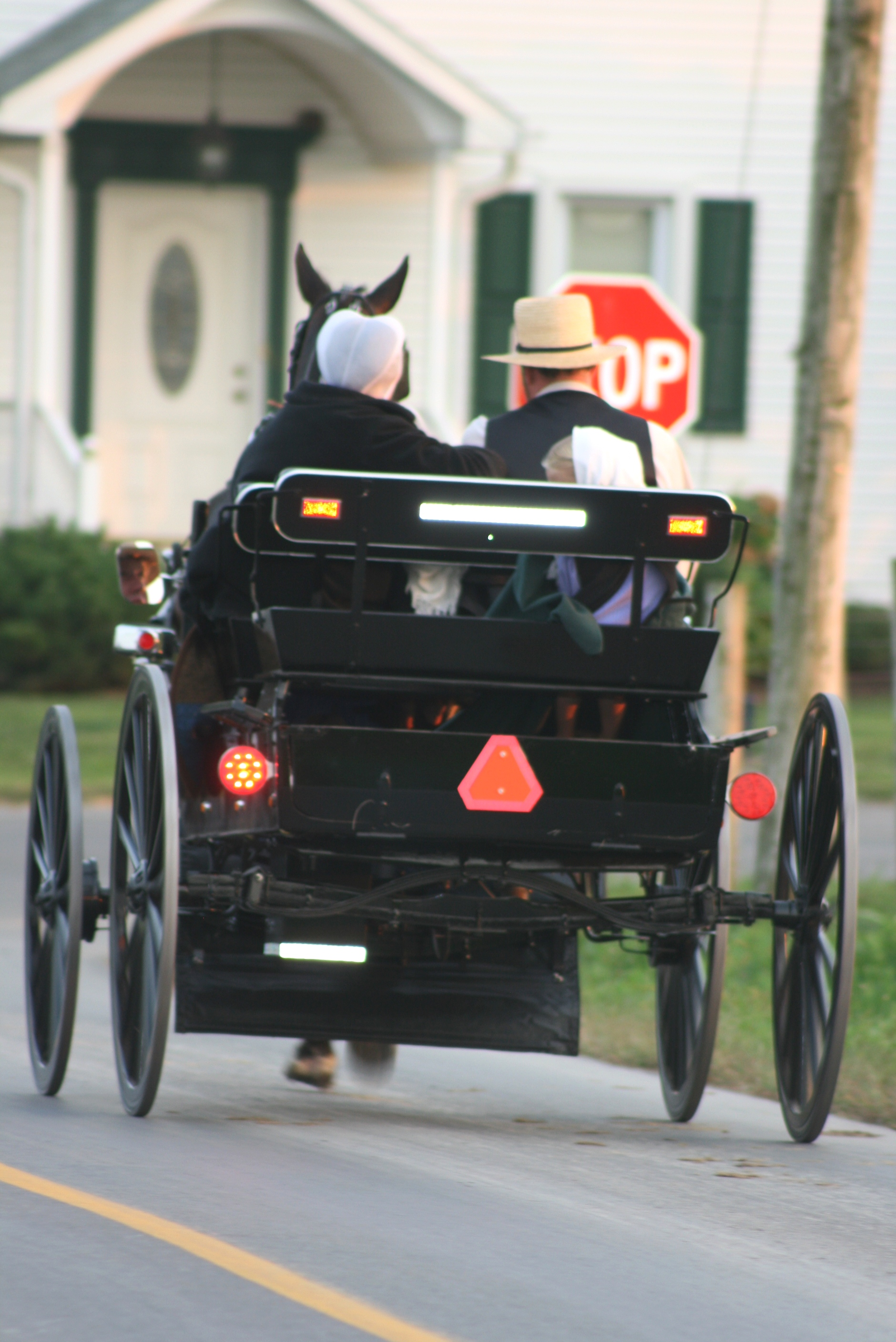 comparing the amish society and british Amish history is a story of struggle and faith origins amish history begins in the early 16th century with the protestant reformation the expansion of worldwide trade began replace goods and services formerly provided by local tradesmen and peasants.